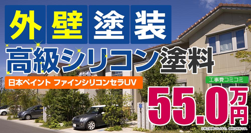 高級シリコン塗装 55.0万円
